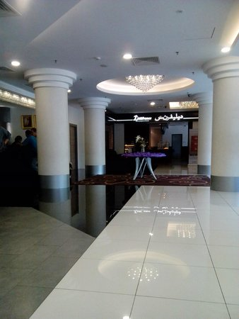 Badi'ah Hotel: lobby area