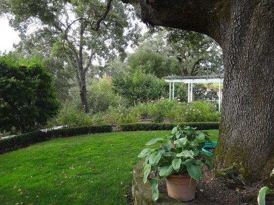Robert Hunter Winery: Winery gardens1