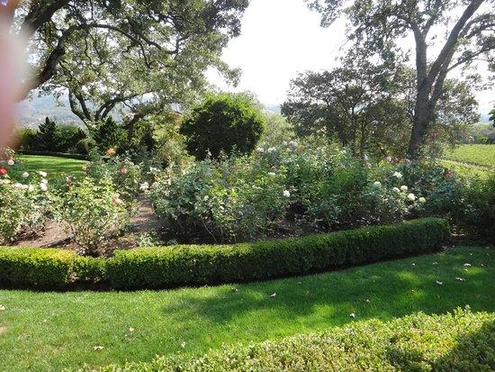Robert Hunter Winery: Courtyard garden2
