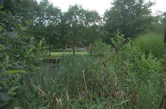 B&B De Meren: Garden