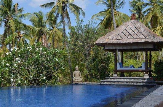 Santi Sari Boutique Hotel : pool view
