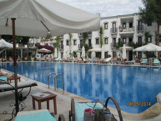 Marina Vista Bodrum: Hotel pool