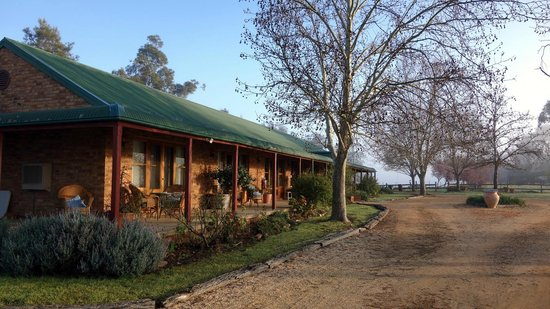 The Vineyard Motel: An early Spring morning