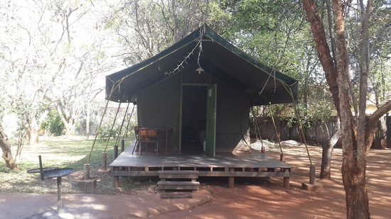 Crocodile Bridge Rest Camp: Safari tent