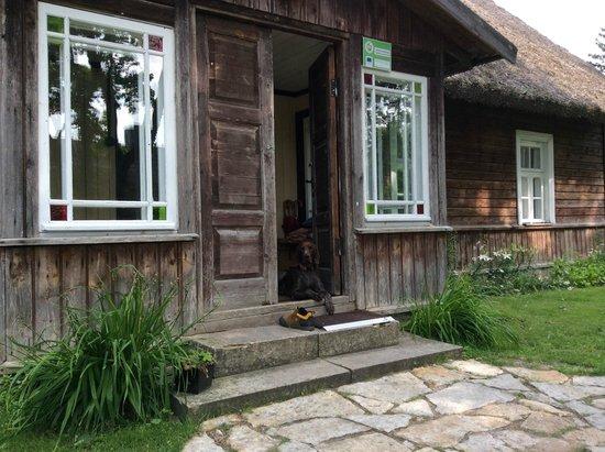 Nautse Mihkli Guesthouse : Front  door