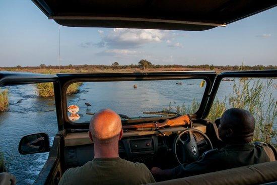 Shimuwini Bushveld Camp: Sunset drive met de ranger. Onderweg zien we een cheetah.