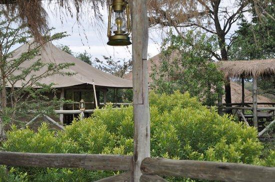 Cheetah Tented Camp: Nuestra cabaña