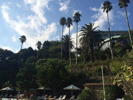 Shimoda Tokyu Hotel: Hotel view from poolside
