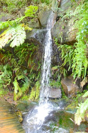 The Spit Bridge: Small water cascade