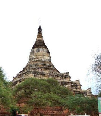 Temples de Bagan : one of the many temples in Bagan