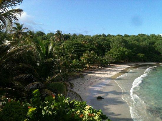 Cabier Ocean Lodge: Blick vom Balkon auf den Strand