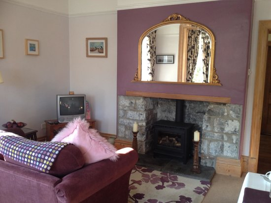 Llys Aeron Guest House: Dining room fireplace