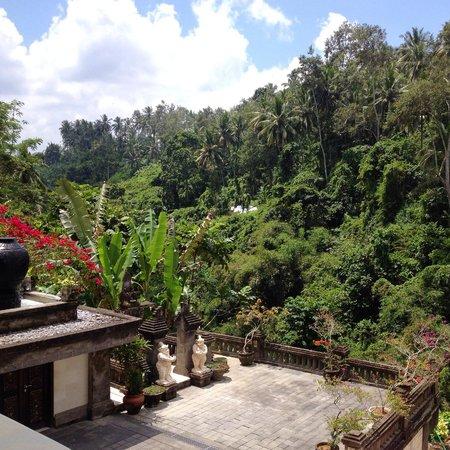 Viceroy Bali: View from villa