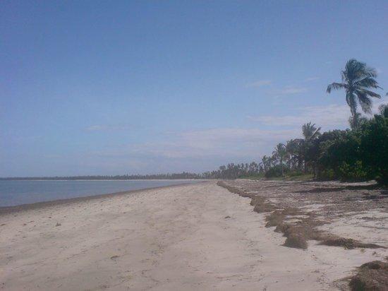 Kijongo Bay Beach Resort: 5 km strand där det aldrig någonsin kommer vara en massa folk som trängs om de bästa platserna.