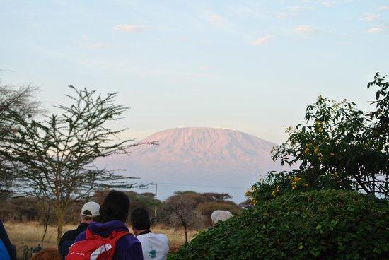 Amboseli Sopa Lodge: レストラン横から見えるキリマンジャロ