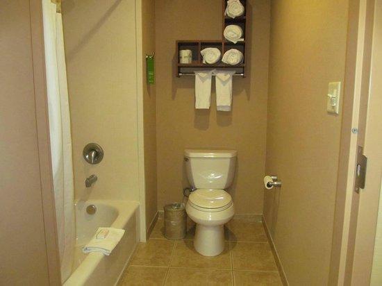 Hampton Inn & Suites Folsom: bathroom