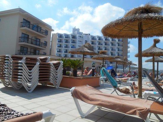 Intertur Palmanova Bay: Sunbathing areas plenty of sun lounges