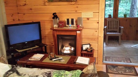 Cabins At Hickory Ridge: Living room