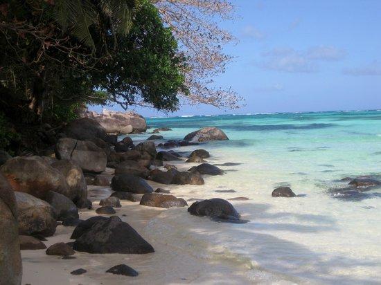 Enchanted Island Resort : Beach below room