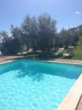 Agriturismo il Corbezzolo : La piscina