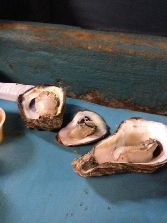 Lee & Rick's Oyster Bar : Pump shucked
