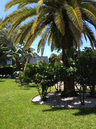 Tropic Isle Beach Resort: Tropic Isle Resort
