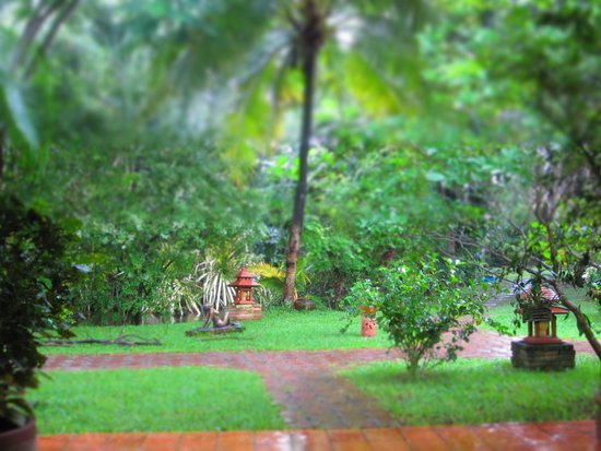 Secret Garden Chiang Mai: garden