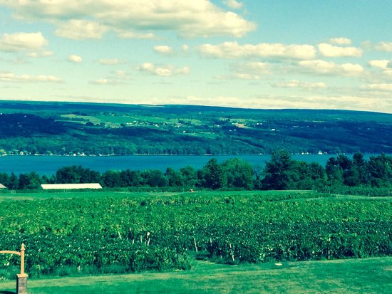 The Inn at Glenora Wine Cellars: View from the deck