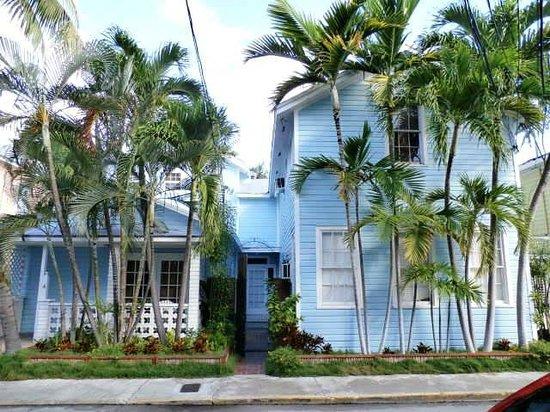 Douglas House: Street View From Amelia St.