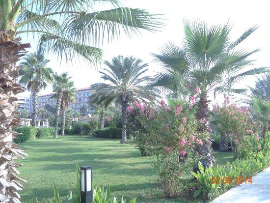 Hotel Riu Kaya Belek : территория отеля