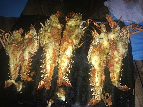 Tobago Paradise Travel and Grill : Lobster of all sizes at the barbeque...take your pick!