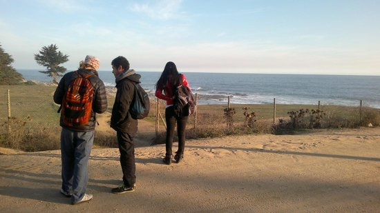 Tour Isla Negra - Day Tours