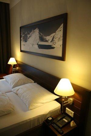 Ski Lodge Reineke : Rummet
