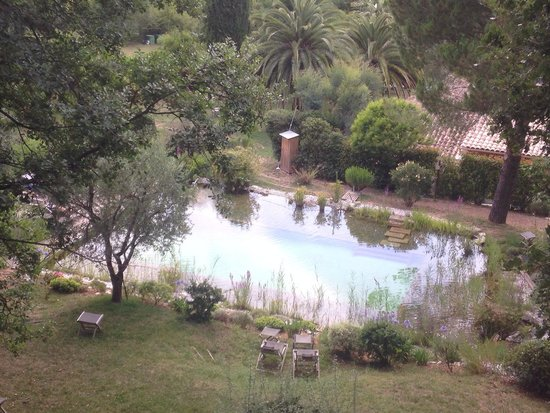 Orion B&B : Piscine naturelle