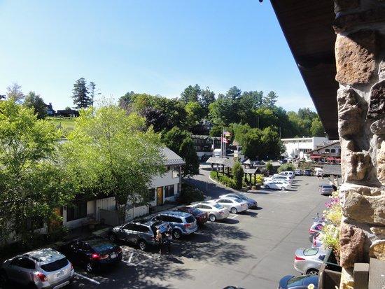 Golden Arrow Lakeside Resort: View from Balcony