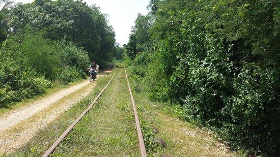 Bamboo Train: La ferrovia