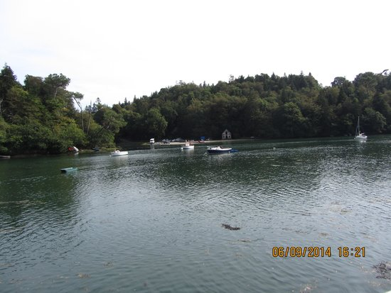Vedettes de l'Odet : Les rives de l'Odet