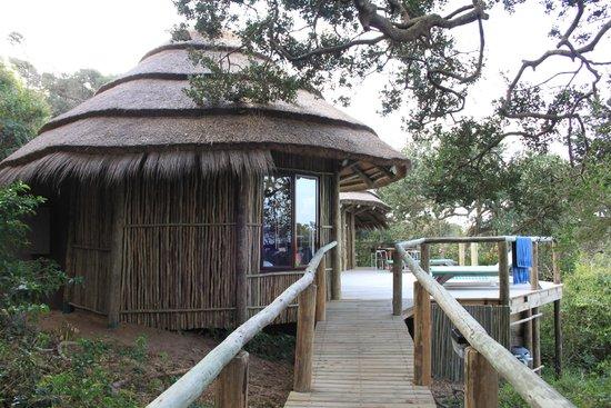 Thonga Beach Lodge: Our rooms