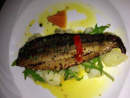 Noisy Oyster: Makrele auf warmen Kartoffelsalat