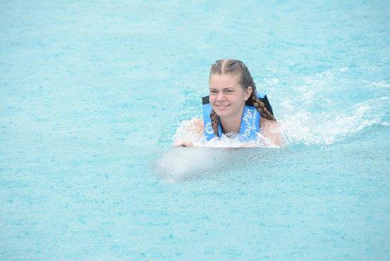 Dolphin Cove Cayman: dolphin swim