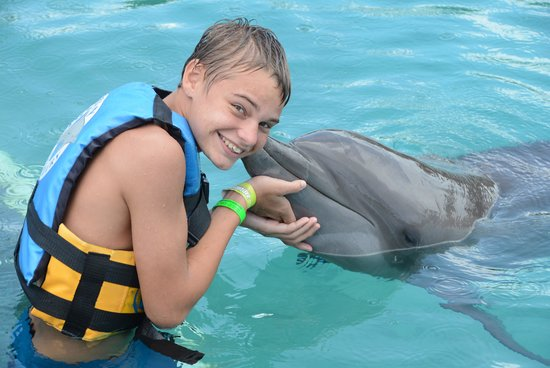 Dolphin Cove Cayman : Dolphin Kisses