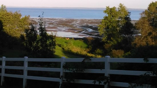 Lyons Cove Bed and Breakfast: View down to the beach