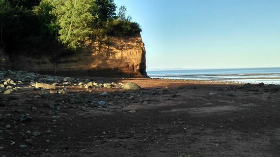 Lyons Cove Bed and Breakfast : Walking on the beach - lots to explore