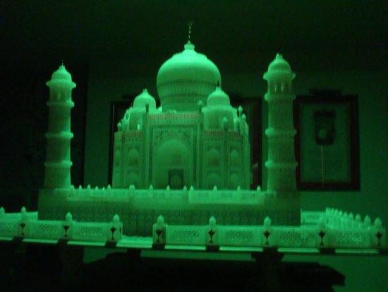 Radisson Blu Agra Taj East Gate: タージマハルのレクチャールーム