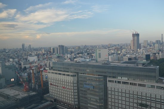 Hotel Century Southern Tower: View from room(Takashimaya in the lower left corner)