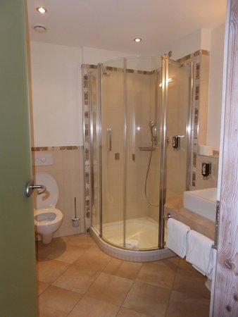 Berghotel Mummelsee : The bathroom