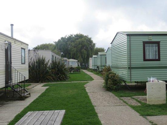 Fort Holiday Park : Caravans