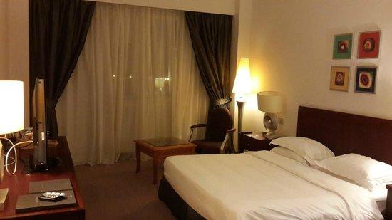 Hilton Alexandria Green Plaza: My room