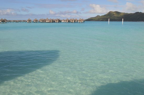 Le Meridien Bora Bora: From Bunglow Patio