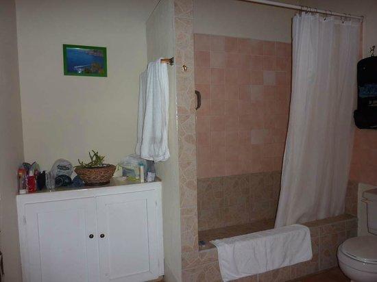 La Terrasse Inn: Badezimmer